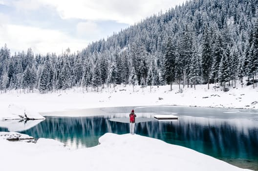 Your Best Ever Strategy to Stay Calm During Winter Stillness